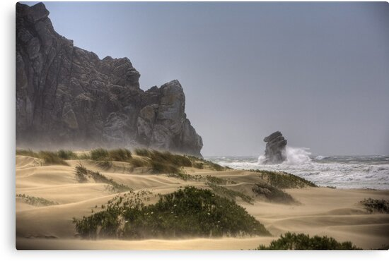 Morro Strand Winds by Cathy L. Gregg