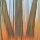 Motion Blur by Benkeys