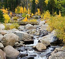 Fall River Road - Rocky Mountain National Park by Gary Gray