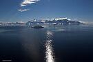 Reflecting on Antarctica 033 by Karl David Hill