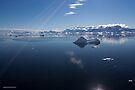 Reflecting on Antarctica 040 by Karl David Hill
