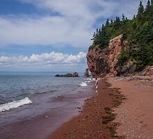 Cape Chignecto Beach by Erin Fitzgibbon