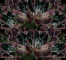 Tiger Lilies by TC-TWS
