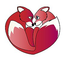 Fox love 2 Photographic Print