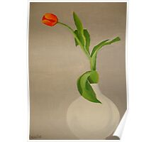 Single Red Tulip In A White Vase Poster