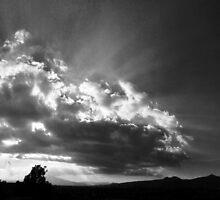 ©HCS Sunhsine VII by OmarHernandez