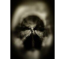 ©DA Alien V Photographic Print