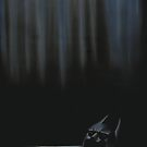 Batman by RachaelSelk