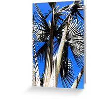 Against a winter's sky Greeting Card