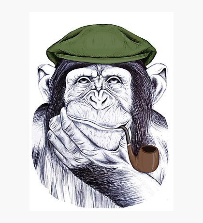 Wise Mr Chimp Photographic Print
