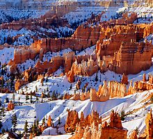 Bryce Canyon, Utah by Harry Oldmeadow