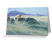 Dartmoor Pony with Tor - oil painting Greeting Card