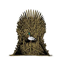 A Game On Throne Photographic Print