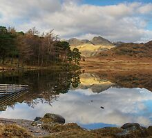 Blea Tarn-Fence End by Jamie  Green