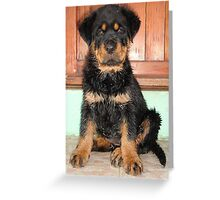 A Discontented and Wet Rottweiler Puppy  Greeting Card