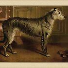 Vintage Irish Wolfhound Greetings by Yesteryears