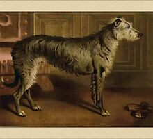 Vintage Irish Wolfhound Greetings by Yesteryears