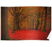 Judy Woods Autumnal  Poster