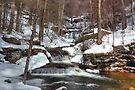 Waters Meet In Winter by Gene Walls