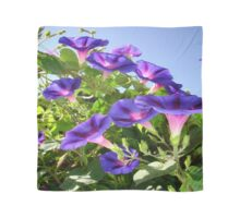 Deep Purple Morning Glory Climbing Plant Scarf