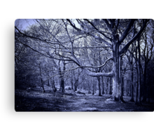 In the Grip of Winter Canvas Print