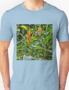Sanchezia, Zebra Plant T-Shirt