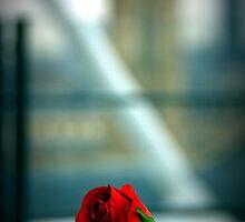 La Rose de Beaubourg. by Jean-Luc Rollier