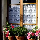 Window at Yvoire by Segalili
