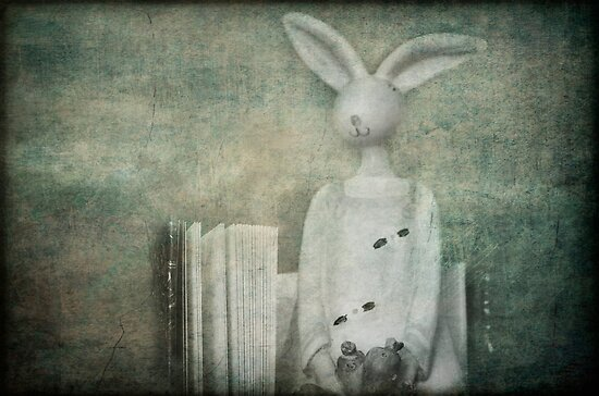 The Rabbit and the Notebook by Clare Colins