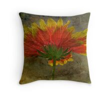 Blanket Flower Wildflower Throw Pillow