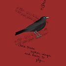 Blackbird by bowtiedarling