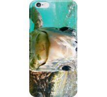 Sea turtle in Hawaii iPhone Case/Skin