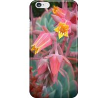 Pink And Yellow Succulent Flowers iPhone Case/Skin