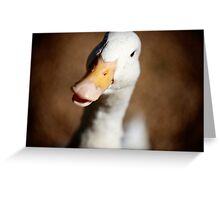 You Must Think I'm Quackers.... Greeting Card