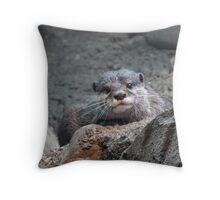 Harry Otter Throw Pillow