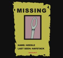 MISSING: NEEDLE IN A HAYSTACK by banocanut