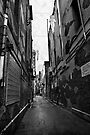 Alleys of Sydney by Chris Westinghouse
