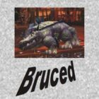 Bruced - WoW Brawler's Guild by SquirrelStuff