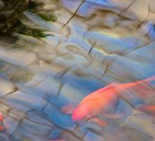 Something fishy by brilightning