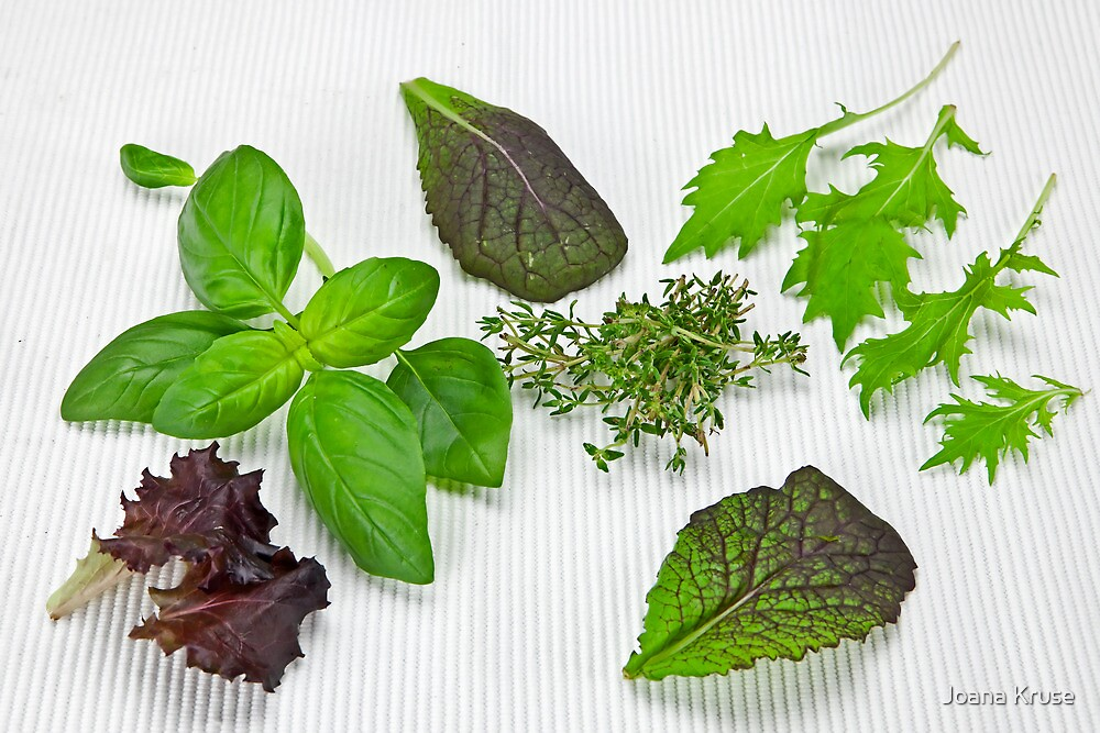 green Salad and spices by Joana Kruse
