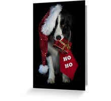 A Merry Christmas to all at Redbubble ! Greeting Card