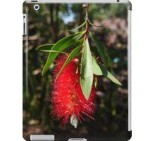 Bottlebrush at Cottesloe, WA iPad Case/Skin
