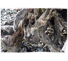 Driftwood On Our Shores --Monmouth Beach, Lyme ,Dorset UK Poster