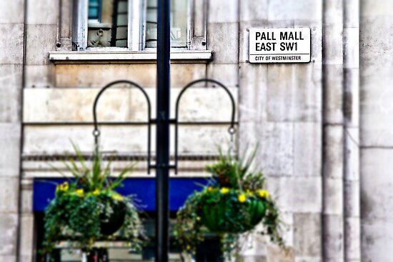 Pall Mall by Ann Evans