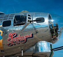 Sentimental Journey by Lee LaFontaine