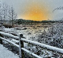 It Must Be Snow by Charles & Patricia   Harkins ~ Picture Oregon