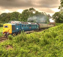 Deltic in Somerset by Rob Hawkins