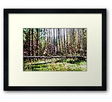 Grungy Texture of Trees Framed Print