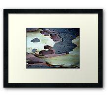Bark Abstract # 10 Framed Print