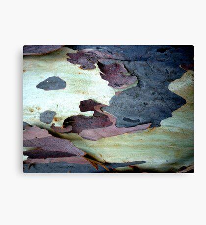 Bark Abstract # 10 Canvas Print